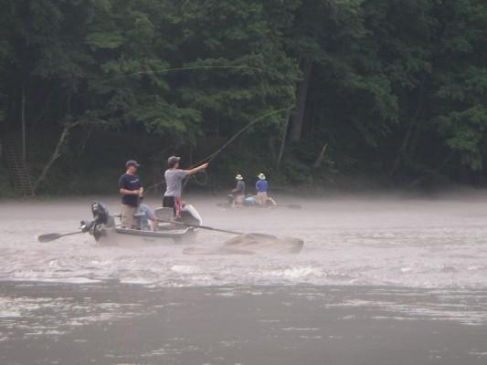 Club announcements 2014 atlanta fly fishing club for Fly fishing atlanta