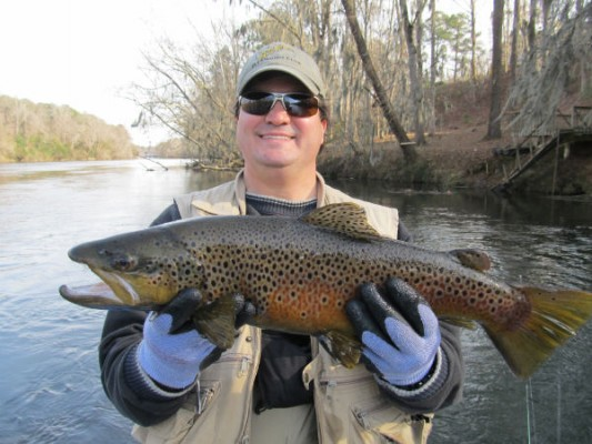 The guide said it was the biggest brown he had seen taken on the river.